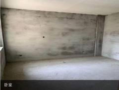 (东城)新天地2室2厅1卫112m²毛坯房