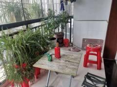 (东城)粤阳小区 大三室 中档装修 恒芝对面 楼层好 近汉城 出门就是公园 34194