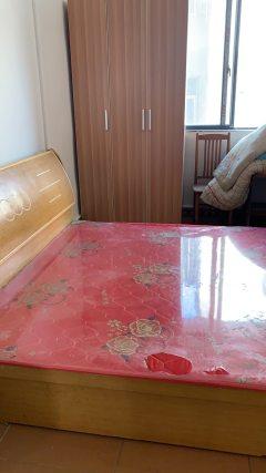 (南城)李湾附近1室1厅500元/月60m²出租